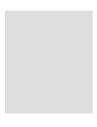 AgenteSegMax826